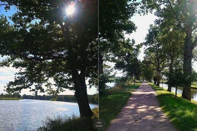 Dróżka i jezioro CT