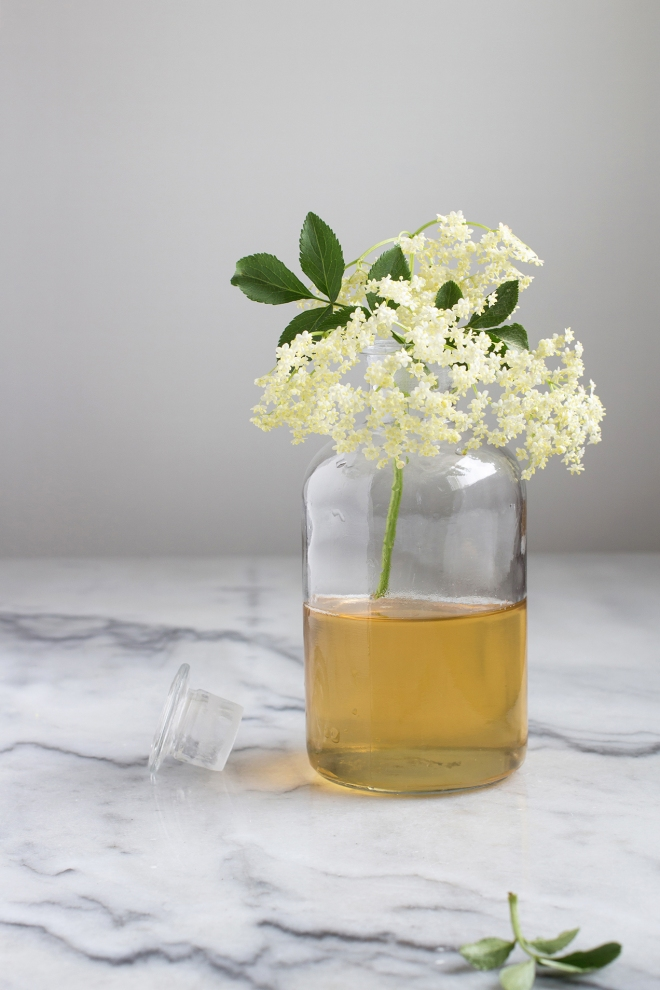 Elderflower syrup | chilitonka